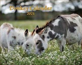 2021 Donkey Calendar - Mischka
