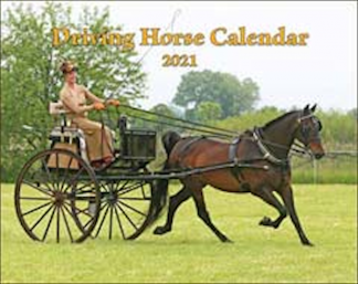 2021 Mischka Driving Horse Calendar