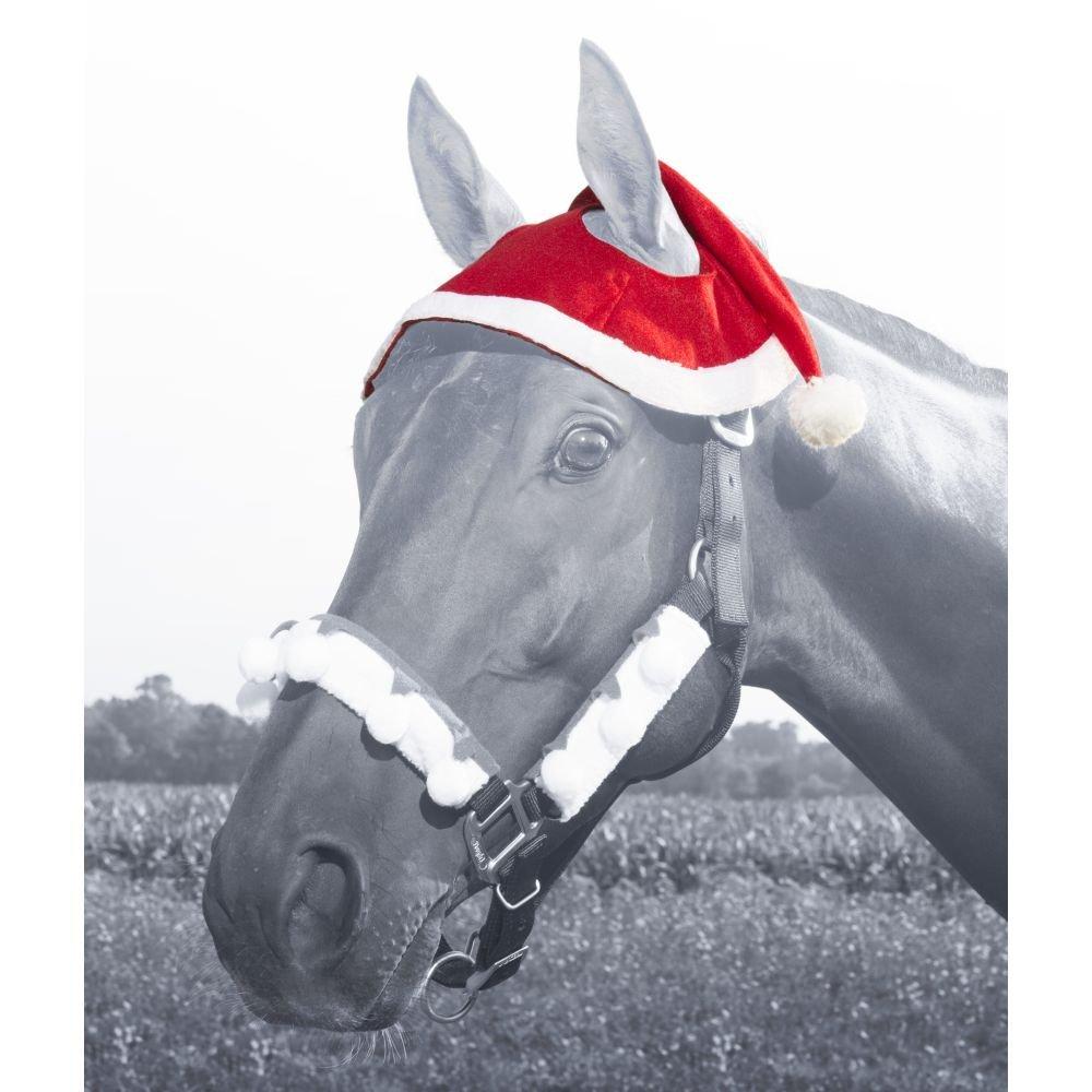 Horse Santa Hat