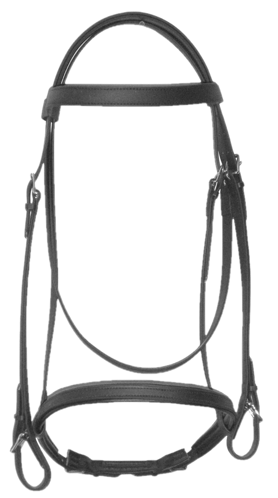 Beta English Bridle