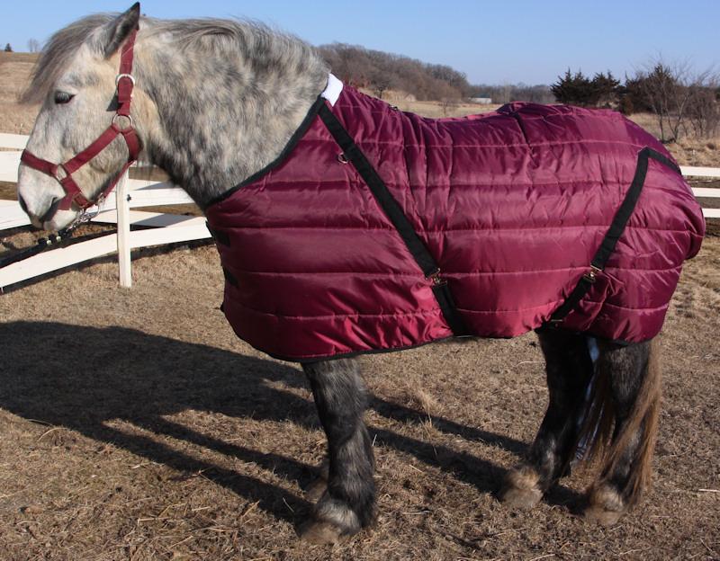 Pony stable blanket (draft horse shown)