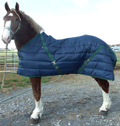 Draft Horse Stable Blanket