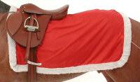 Holiday Horse Quarter Sheet