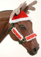 Christmas holiday reindeer hat for horses