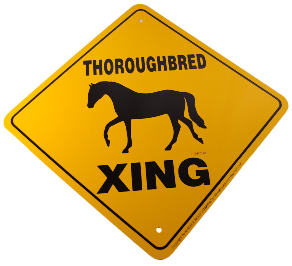 Thoroughbred Xing