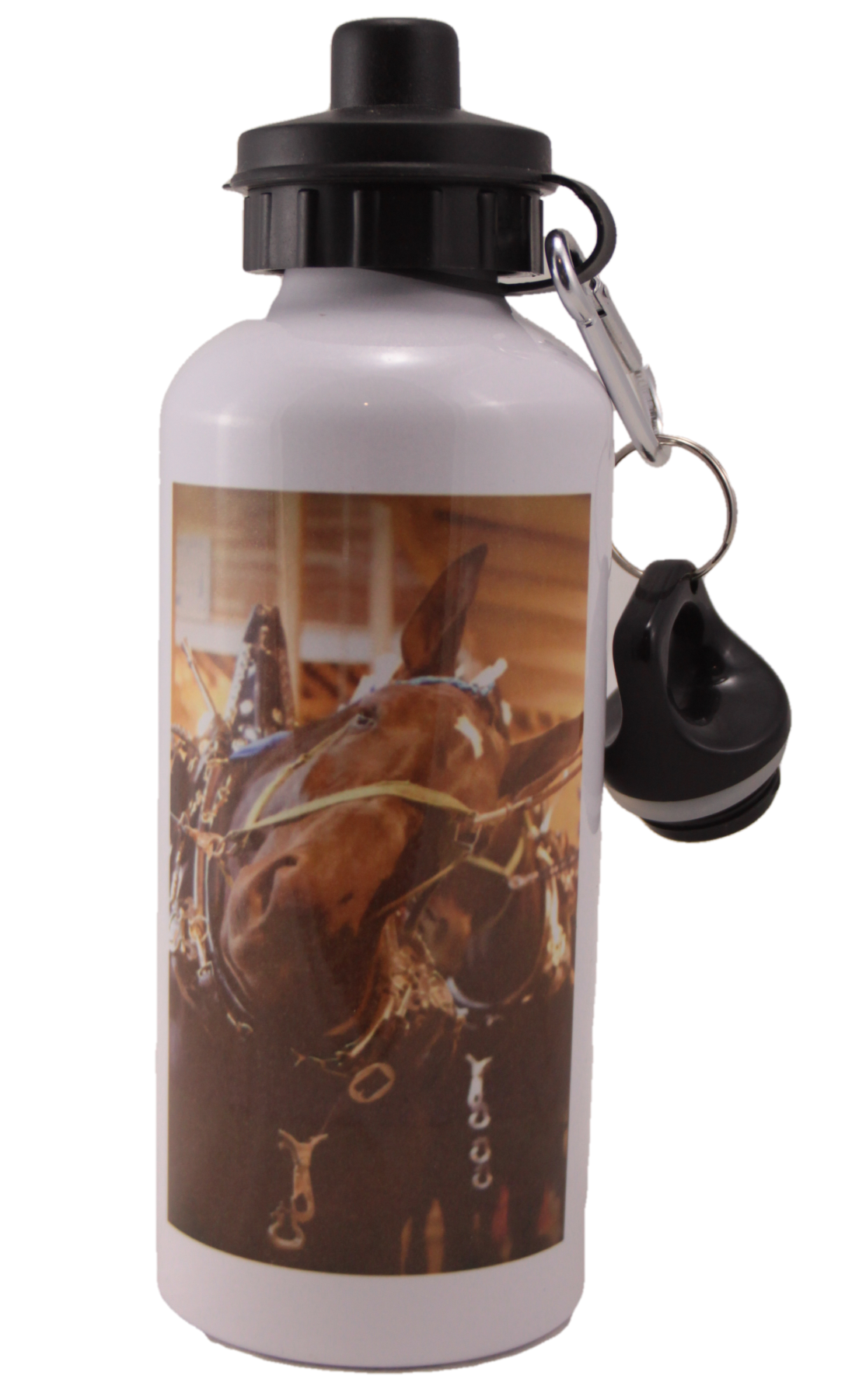 Percheron Head Aluminum Water Bottle