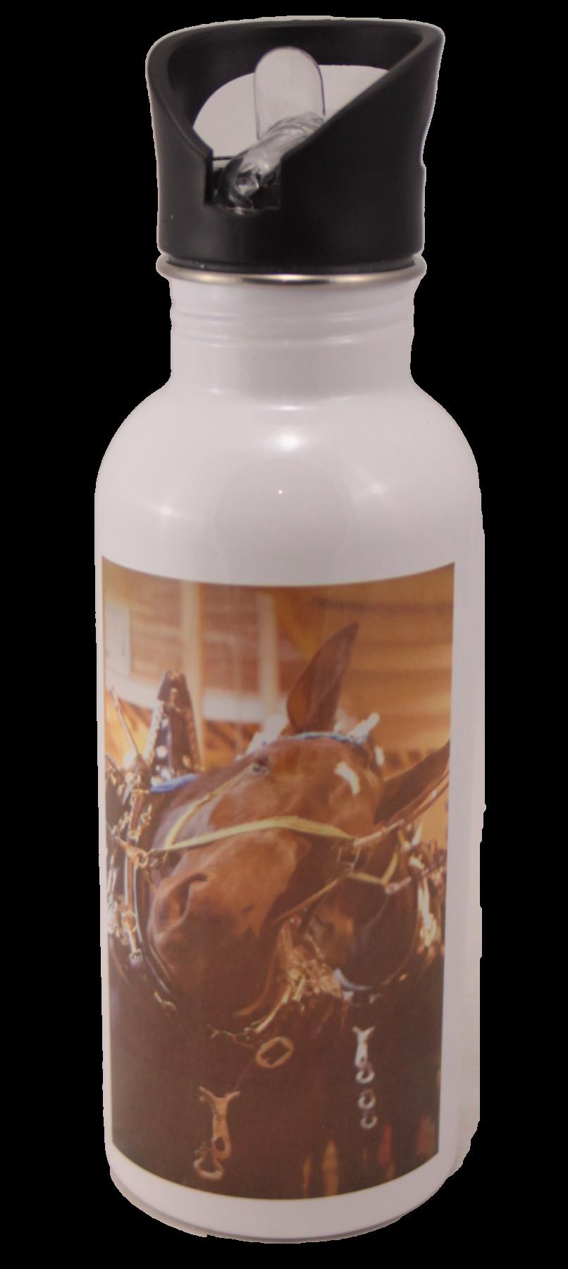 Percheron Horse Head Aluminum Water Bottle